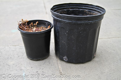 Recycle Plastic Nursery Pots